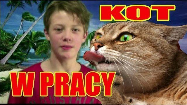 """AleJaJa TV+,""""Kot w pracy"""", Dowcip,kawały,śmieszne zwierzęta,vevo"""