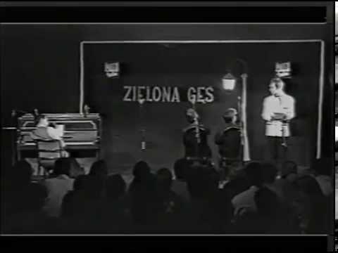 Kabaret Potem – Teatrzyk Zielona Gęś