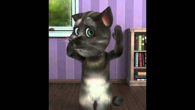Smieszne filmiki kawaly smieszny kot