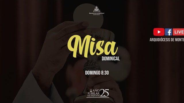 ⭕️ Domingo XXIV del Tiempo Ordinario 12 Sep. 2021